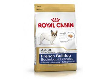 Bulldog Francés Adulto