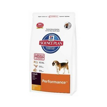 Hill's Canine Adult Performance