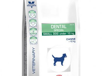 Dental Speciall Small Dog