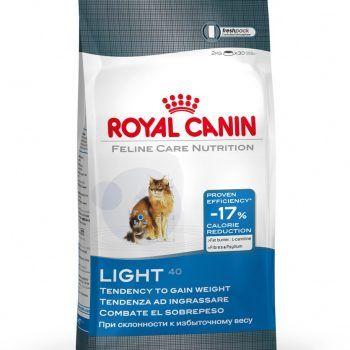Feline Light 40