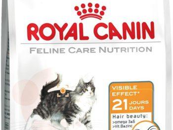 Feline Hair & Skin 33
