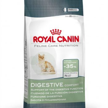 Feline Digestive Comfort 38