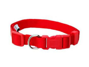 Collar regulable nylon basic